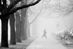 Ghost town (Misztu) Tags: ostróda ostroda mazury masuria zima winter mgła fog poranek morning pentax ulica street