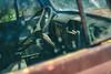 hazy days of summer (Marty Hogan) Tags: us41 menomineecounty michigan upperpeninsula fordtruck abandonedtruck rustytruck rust brokendown