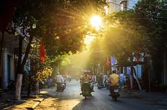 Nắng sớm Trà Vinh (daihocsi [(+84) 918.255.567]) Tags: travinh nắng tia ray sunlight morning