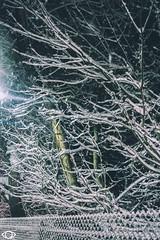 edited-50 (Achromaticz) Tags: blizzard snow winter plow government connecticut nj new york jersey adventure dangerous achromaticz eye achromatic photography street