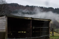 Dark days (melisa_anabel) Tags: travel night clima gris grey boy girl dark bruma dust landscape outside scotland escocia highlands up high