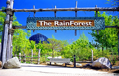 The Rain Forest (Thom Sheridan) Tags: thomsheridan clevelandmetroparkszoo old vintage film 1999