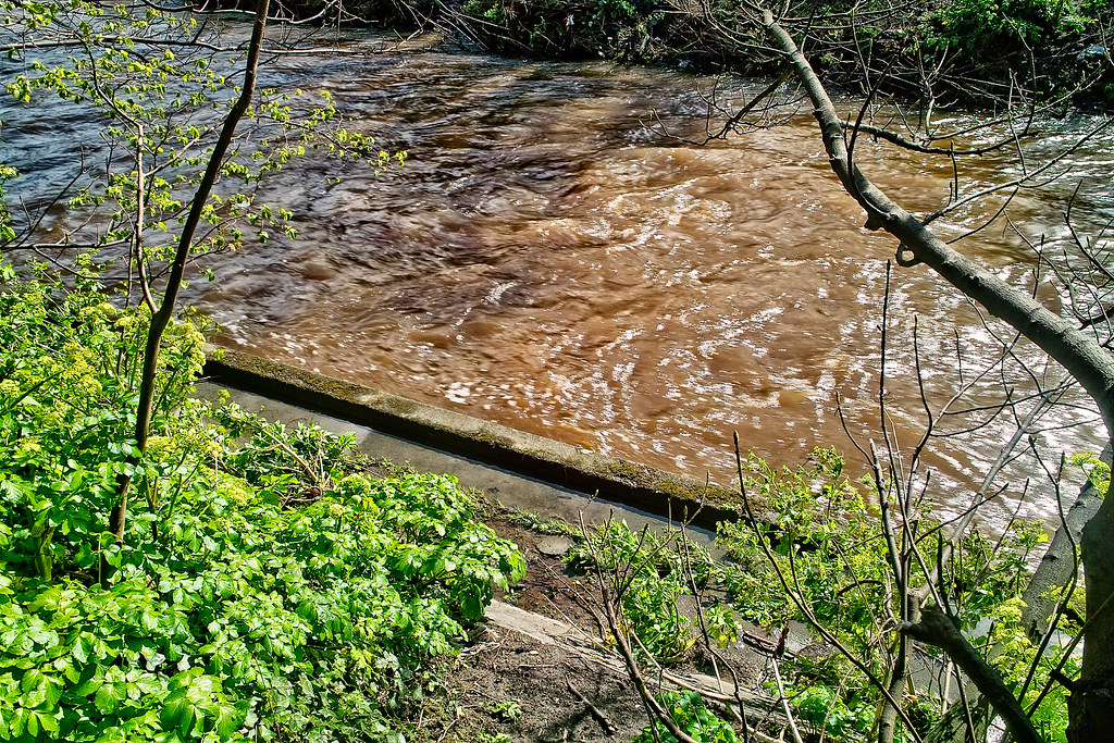 THE DAY AFTER THE DODDER FLOODED IN 2008 [OLD RAW FILES FROM A SIGMA DP1 HAVE BEEN REPROCESSED]-136111