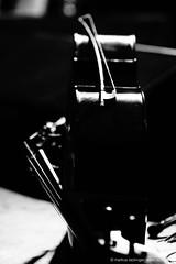 double bass on stage (jazzfoto.at) Tags: wwwjazzfotoat wwwjazzitat jazzitsalzburg jazzitmusikclubsalzburg jazzitmusikclub jazzfoto jazzphoto markuslackinger jazzinsalzburg jazzclubsalzburg jazzkellersalzburg jazzclub jazzkeller jazzit2018 jazz jazzsalzburg jazzlive livejazz konzertfoto concertphoto liveinconcert stagephoto greatjazzvenue downbeatgreatjazzvenue salzburg salisburgo salzbourg salzburgo austria autriche blitzlos ohneblitz noflash withoutflash sony sonyalpha sonyalpha77ii alpha77ii sonya77m2 concert konzert concerto concierto a77m2