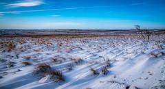 Snowy moor (Timallen) Tags: peakdistrict snow derbyshire moorland