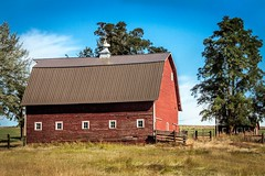 IMG_4063-922-1194 (Marvin M) Tags: barn palouse red