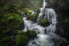 'Chaos Rains' - Vancouver Island (Gavin Hardcastle - Fototripper) Tags: vancouverisland waterfall moss rainforest rain river creek winter cold wet deluge rainy green gavinhardcastle fototripper britishcolumbia
