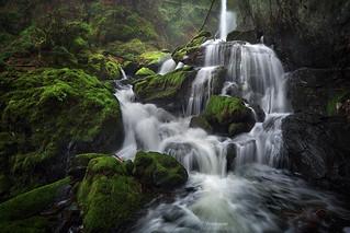 'Chaos Rains' - Vancouver Island