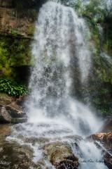 #Colombia #nikon #nature #agua #Cascada #D3200 (CM PHOTO COLOMBIA) Tags: nikon agua nature cascada d3200 colombia