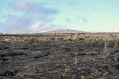Mauna Ulu (wyojones) Tags: hawaii hawaiivolcanoesnationalpark hawaiian maunaulu lavaflows cindercone cinder cliffs tephra volcano basalt wyojones np