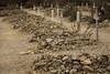 Arizona-2018_0587 (PetteriJarvinen) Tags: tombstone arizona unitedstates us boothillcemetery boothill