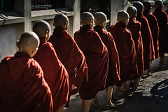 Shaved Heads (Trent's Pics) Tags: begging bowl monk line bagan buddha buddhist donations lifestyle monks morning myanmar offering people portrait rice spiritual village