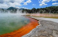 DSC_1482.jpg (David Hamments) Tags: newzealand waiotapu nature thermalsite champagnepool ngc flickrunitedaward fantasticnature