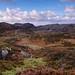 Gneiss Landscape