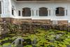 J4. Dambulla - Rock Temple (Darth Jipsu) Tags: rock colorfull sacred landmark dambulla buddha shrine religion unesco buddhism statue waterlilies ceylon lily ceylan architecture water cave historic temple srilanka centralprovince lk