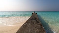 A9901440_s (AndiP66) Tags: strand beach sonne sun adaaran select meedhupparu raa atoll insel island male airport malediven maldives indischerozean indianocean februar february 2018 sony alpha sonyalpha 99markii 99ii 99m2 a99ii ilca99m2 slta99ii tamron tamronsp1530mmf28diusd tamron1530mm 1530mm f28 amount andreaspeters