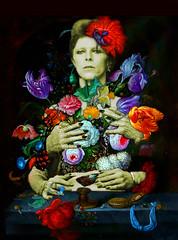 starman (victoria.amodeo) Tags: collage collageart bowie davidbowie digitalart flowers portrait flourish color collagemaker art artwork