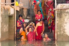 Great devotion...Varanasi ..Bénares..2017 (geolis06) Tags: geolis06 asia asie inde india uttarpradesh varanasi benares gange ganga pelerin pilgrim pelerinage pilgrimage hindu hindou offering priere prayer inde2017 olympus olympusm75300mmf4867ii femme woman women devotion dévotion prière bénares ghat pélerin banaras