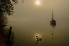 Alone... (milance1965) Tags: mist fog millstättersee kärnten österreich nikon d7000 landschaft nebel sonne nebelundsonne