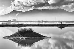 Mondi - (Macchiareddu) (nicolamarongiu) Tags: macchiareddu cagliari sardegna italy paesaggio landscapes biancoenero blackandwhite manaltered monocromo monocrome alba sunrise