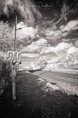 Campagne du Pas-de-Calais, INFRARED - 2012 (jeje62) Tags: ir artois ham hamenartois infrared infrarouge paysage pasdecalais blackandwhite nb digitalinfrared