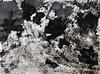 Abstract expressive abstract abstracts drawings paintings ink on paper black and white raphael perez (Raphael Perez Israeli Artist) Tags: רישום מופשט אקספרסיבי רישומים מופשטים אקספרסיביים ציור אבסטרקט ציורים אבסטרקטים abstract expressive abstracts drawings paintings ink paper black white raphael perez
