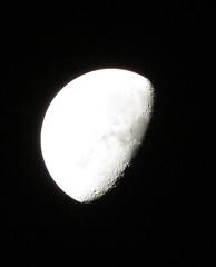 IMG_2140 (stevefenech) Tags: canada ontario stephen steve fenech fennock moon