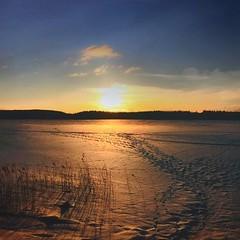~ traces of pimp fishermen ~  Lower Vättern, Skinnskatteberg, Sweden iPhone 7 (Tankartartid) Tags: blåhimmel bluesky clouds moln traces spår sunset solnedgång sky himmel sol sun landskap landscape vinter winter frozenwater frusetvatten snö sjö frusensjö fruset frozenlake frozen norden nordic västmanland skinnskatteberg europe sverige sweden instagram ifttt