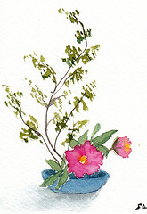 "ACEO #63 - ""Ikebana Inspired 4"" (Sonia Aguiar (Mallorca)) Tags: ikebana aceo acuarela soniaaguiar watercolor watercolour wallart bouquet botanicalart aquarell aquarelle smallart atc"