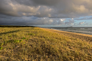 Early morning in the Sand Dunes. Week 4 out of 52.