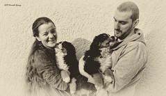 DSC00292-Edit-Edit-Edit-Edit (sportsHUN) Tags: landscape babys dogs puppies portre