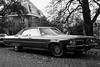 Oldsmobile Ninety-Eight (Skylark92) Tags: nederland netherlands holland utrecht city stad oldsmobile 98 ninety eight am1822