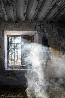 Revelaciones de un atormentado pasado. / Revelations of a haunted past.