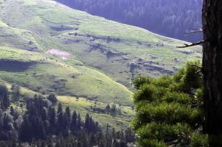 Mountain plateau of Lake Naki