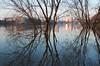 Seine miroir (Corinne Queme) Tags: seine crue alfortville arbres reflet eau coucherdusoleil hiver