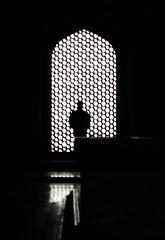Silent observer (Onlyshilpi) Tags: humayunstomb delhi silhouette blackandwhite monochrome mobilephotography