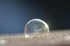 frozen bubble (simo m.) Tags: bubble frozen winter cold soap ice