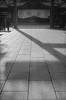 something's shadow (N.sino) Tags: m4 summicron5cm neopan acros shrine yasukunishrine shadow 影 鳥居 靖国神社