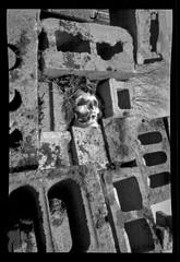 PINHOLE---KODAK-PAN-F---EI-12--WESTON-PYRO--15-MIN-68-DEGREES (MISCONCEPTION PHOTO) Tags: pinhole 120 film pan f blocks skull