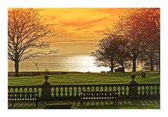 Golden (Myrialejean) Tags: golden sea coastal bridlington sewerby tree winter bench seasons sky bright water grass eastcoast eastriding