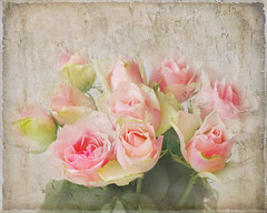 Roses to Tony. (BirgittaSjostedt- away for a while.) Tags: roses flower texture paint birgittasjostedt