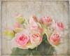 Roses to Tony. (BirgittaSjostedt) Tags: roses flower texture paint birgittasjostedt