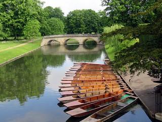 CAMBRIDGE. 66
