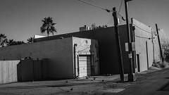 mesa 00861 (m.r. nelson) Tags: mesa arizona america southwest usa mrnelson marknelson markinazstreetphotography urbanmarkinaz blackwhite bw monochrome blackandwhite newtopographic urbanlandscape artphotography