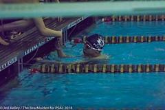 18.02.15_Swimming_StuyVSBTech_Mens_Champs_LehmanCollege_ (Jesi Kelley)-465 (psal_nycdoe) Tags: brooklyntech lehmancollege nycpsal nycpsalsports nycsports newyorkcitypublicschoolsathleticleague psal stuyvesanthighschool swimmingrelays teenagersplayingsports highschoolsports kidsplayingsports swimming diving championship brooklyn tech stuyvesant 201718 lehman college nyc department education 201718swimmingdivingboyscitychampionshipbrooklyntech42vstuyvesant55 jesi kelley jessica public schools athletic league boys high school new york city nycdoe newyorkcity newyork usa 42 v 55 technical champion stuy