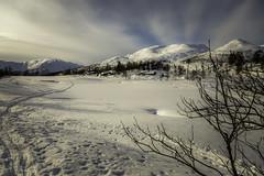 Winter (Askjell) Tags: cold grøndalen ice instetjønna mountain mountains møreogromsdal norway scenery snow sunnmøre volda winter landscape nature