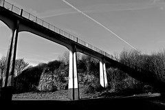 Riverside 03a (oddbodd13) Tags: sunderland riverside park bridge landscape cliff trees monochrome leadinglines shadow