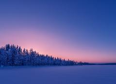 winter sunset in Finland (juhwie.foto - PROJECT: LEIDENSCHAFT-LICH-T) Tags: finnland finland finlandia scandinavia saija saijalodge winter frost lake frozen trees sunset landscape landscapephotography simple pentax pentaxart ricohimaging k1 1530 woods snow glow ngc blue bluehour