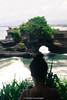 _DSC4603 (UdeshiG) Tags: bali indonesia asia waterfalls uluwatu seminyak tanahlot nikon ubud kuta paddy dogs balidogs travel traveltheworld
