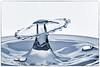 Macro Monday 2018-02-01 (5D_32A7880) (ajhaysom) Tags: waterdropcollision macro macromonday macromondays canon100mmlmacro canoneos5dmkiii 100xthe2018edition 100x2018 image15100 monochrome